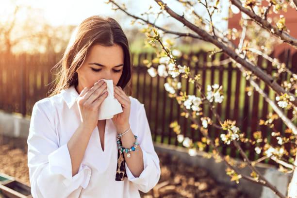 het niezen van de vrouw in de bloeiende tuin - allergie stockfoto's en -beelden