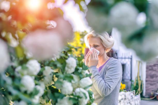 frau niesen in der blühenden garten - heuschnupfen stock-fotos und bilder