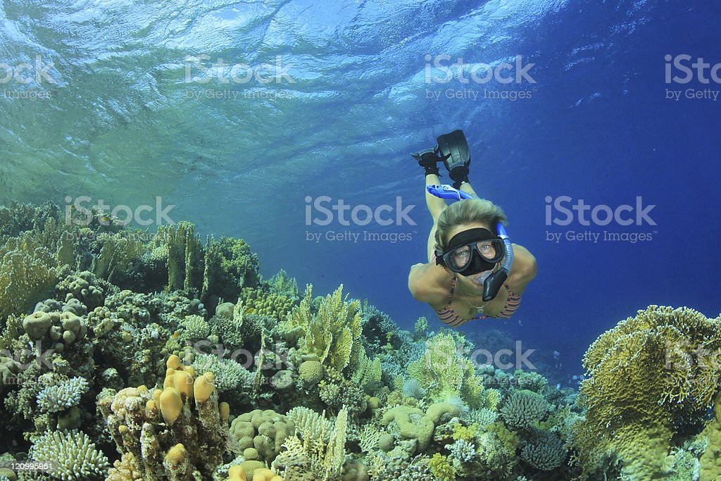 Woman Snorkeler and Coral Reef stock photo