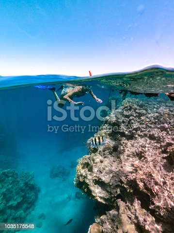 Woman Snorkeling At Coral Reef , Red Sea