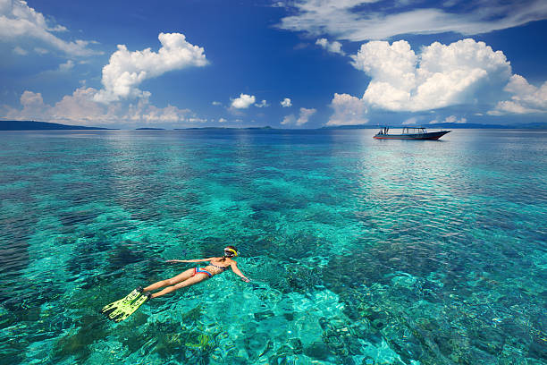 Woman snorkeling in clear tropical waters Young woman in swimsuit snorkeling in transparent tropical sea above coral reef.  North Sulawesi, Indonesia. manado stock pictures, royalty-free photos & images