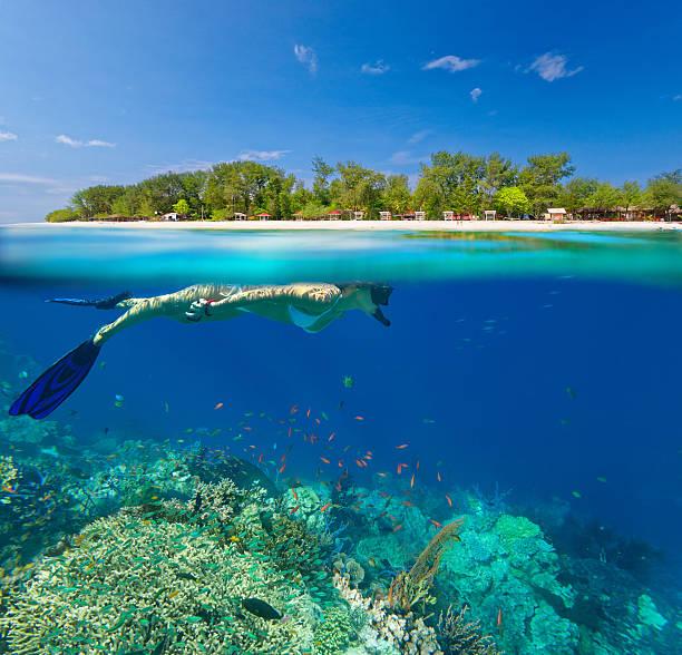 woman snorkeling in clear tropical waterson - lombok stockfoto's en -beelden