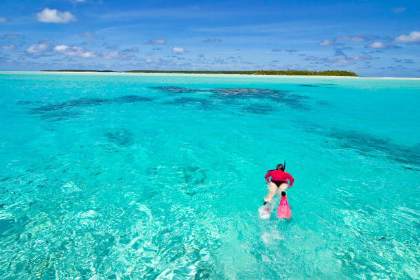 A woman snorkeling in the reefs stock photo