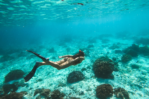 888067280 istock photo Woman snorkelling underwater with snorkel mask in clear transparent water in beautiful tropical lagoon with coral reef. Freediving activity. Leisure on vacations. 1222549145