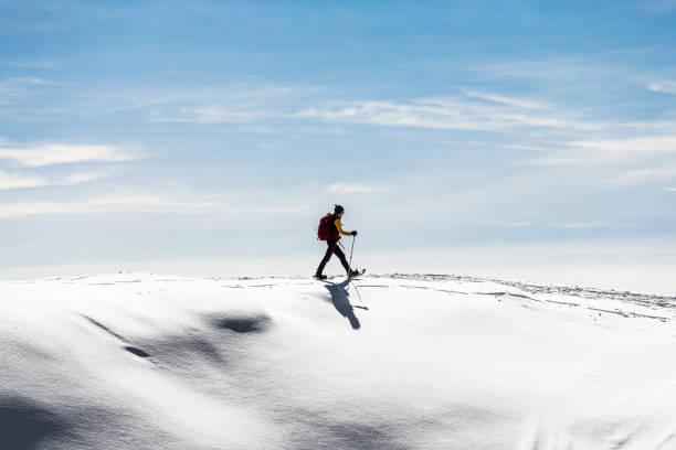 champ de neige femme snowshoeingon - raquette photos et images de collection