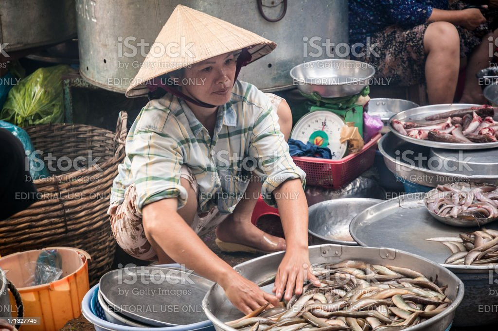 Woman Sorting Fresh Fish At Hoi An Market In Vietnam royalty-free stock photo
