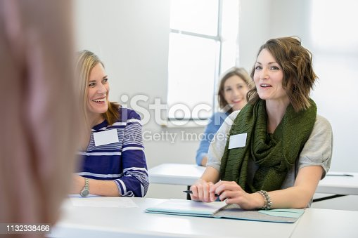 640177838 istock photo Woman speaking during neighborhood or community meeting 1132338466