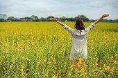 彼女の手の黄色い花のフィールドの間に立って女性を上げる空気、後部ショット、サンヘンプ