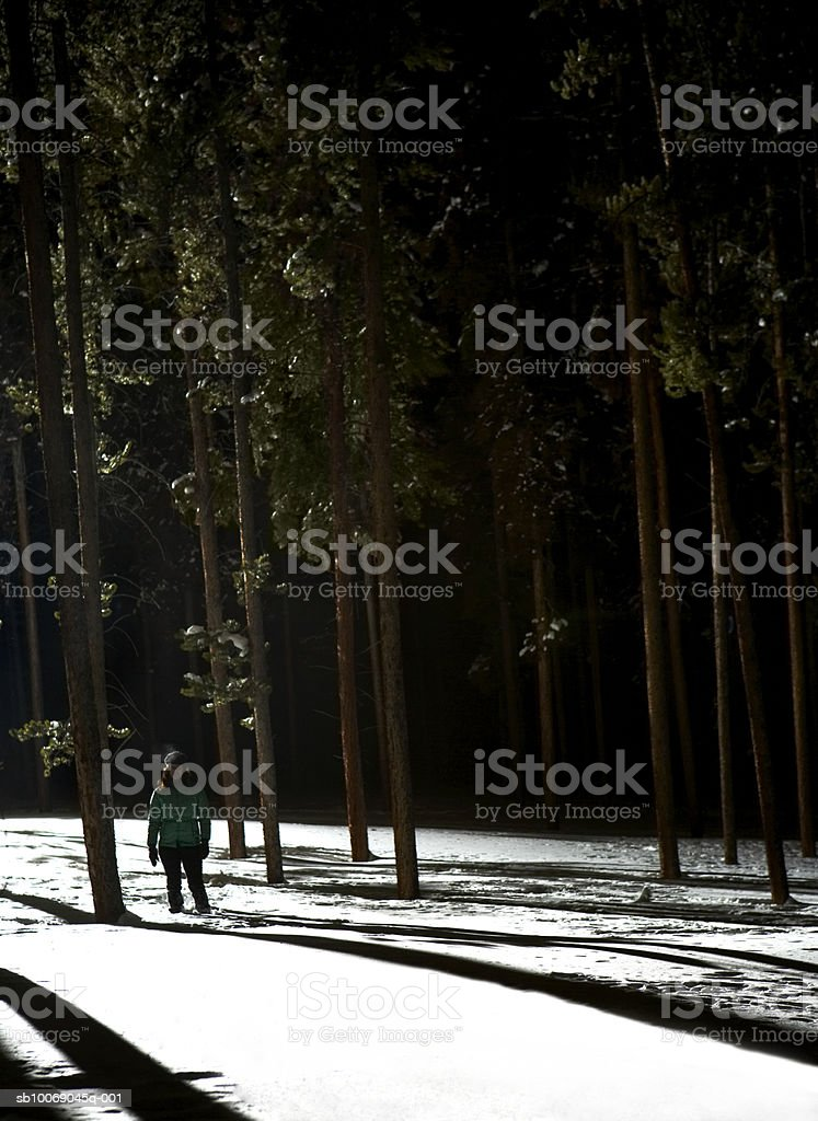 Woman standing in snow royalty free stockfoto