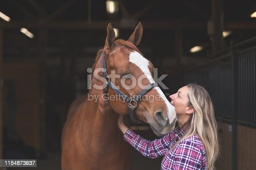 A magnificent horse stands in the barn, patiently waiting to go out. A woman is standing by him and affectionately resting her hand on him.