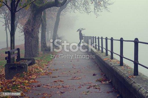 Beautiful woman standing beside railing of pedestrian walkway on a misty autumn day.