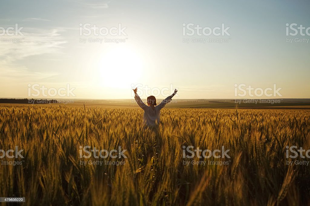 Woman stands in a field of ripe wheat stock photo