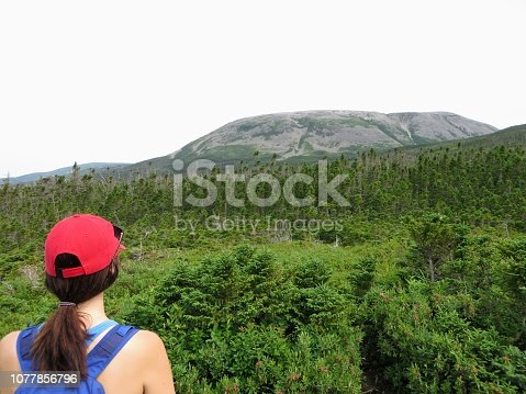 458694311 istock photo A woman staring up at Gros Morne Mountain from below.  She is ready to do the Gros Morne Mountain hike in Gros Morne National Park, Newfoundland and Labrador, Canada. 1077856796