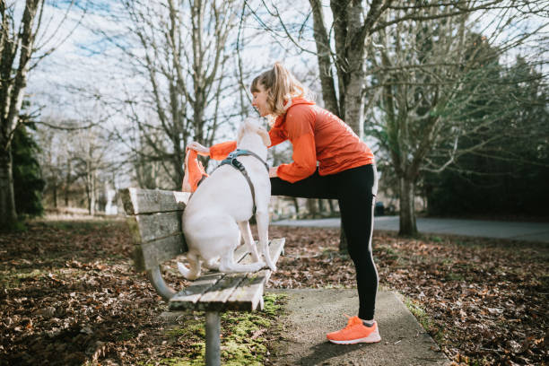 Woman Stretching Before Run Outdoors With Pet Dog A young adult woman enjoys jogging outdoors on a beautiful day in the Pacific Northwest, her canine companion joining her for the exercise run.  She stretches her hamstrings on a park bench.  Shot in Seattle, Washington. hamstring stock pictures, royalty-free photos & images