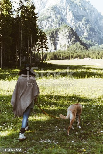woman strolling with the dog in the alps