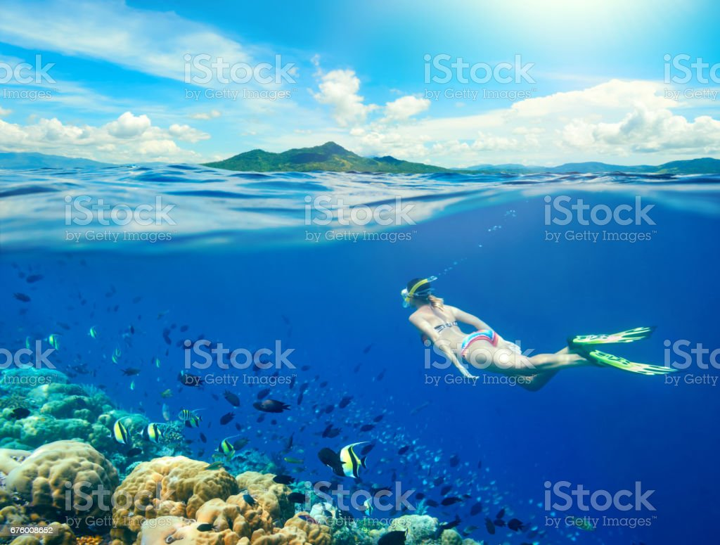 Woman swims around a coral reef surrounded by a multitude of fish. stock photo