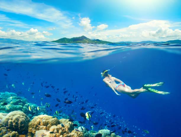 Mujer nada alrededor de un arrecife de coral rodeado de una multitud de peces. - foto de stock