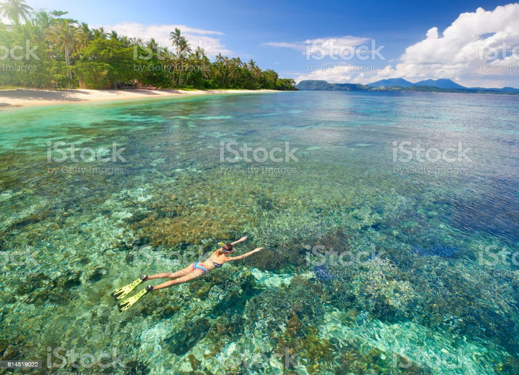 Woman swims with mask and snorkel in clear tropical waters. stock photo
