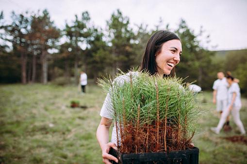 Woman watering cypress plants