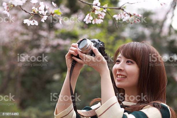 Woman takes a picture of blooming cherry blossoms picture id519314480?b=1&k=6&m=519314480&s=612x612&h=qv0nhh0qpl2jqidh8byiwue7o3y2ykyqvkf9ylvi2bs=