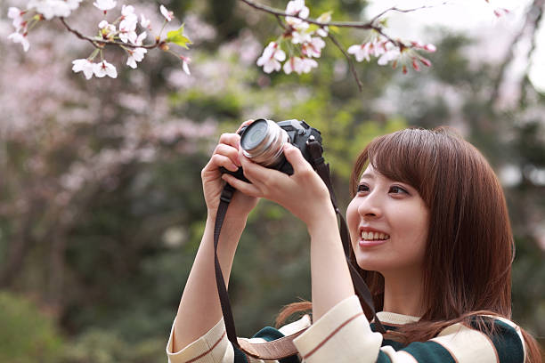 woman takes a picture of blooming cherry blossoms - spiegelreflexcamera stockfoto's en -beelden