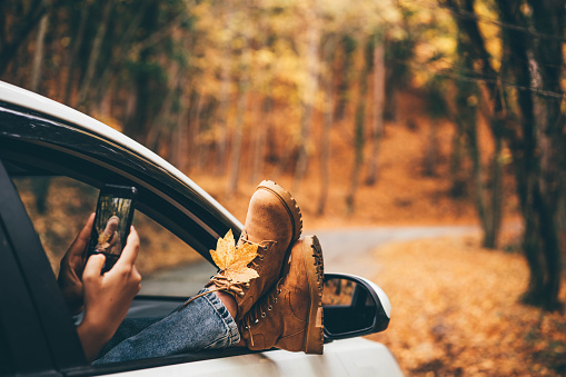 Woman takes picture of bright yellow leaf with mobile phone sticking legs out of car window in picturesque autumn forest