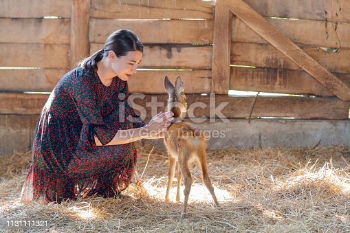 Young woman crouching by a fawn, taming it