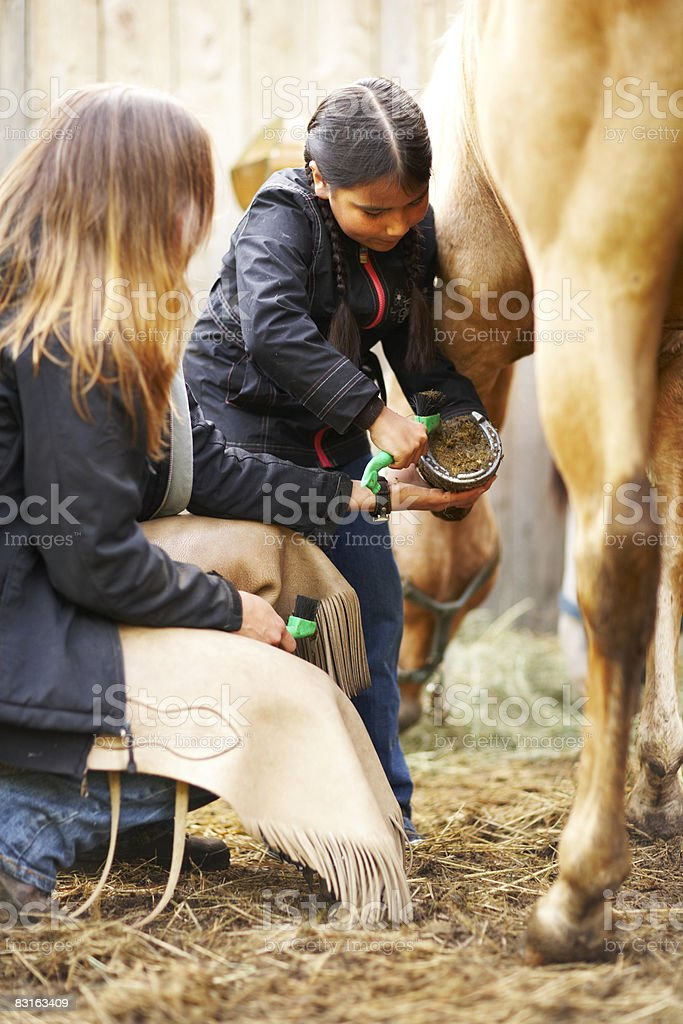 Woman teaching girl how to groom a horse. royalty free stockfoto