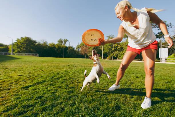 Woman throwing orange flying disk to small funny dog which catching picture id885934370?b=1&k=6&m=885934370&s=612x612&w=0&h=yizxrzgkmwoazndvj2sukyuyjlynfengozhcyh6wc2o=