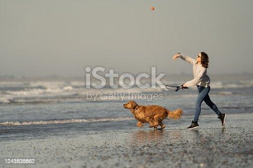 Dog runs along the beach, towards the water to catch ball