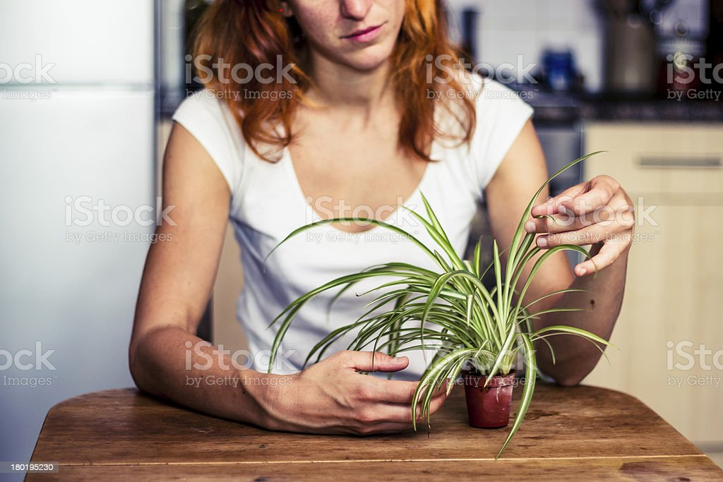 Woman tidying her plant stock photo