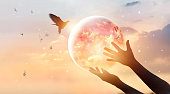 istock Woman touching planet earth of energy consumption of humanity at night, and free bird enjoying nature on sunset background, hope concept, Elements of this image furnished by NASA 881359070