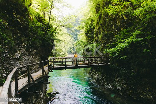 Young woman with long hair and yellow t-shirt and a small dog - pug breed exploring the beautiful canyon and Soča river walking on the wooden bridge during sunny summer day in Julian Alps, Triglav National Park