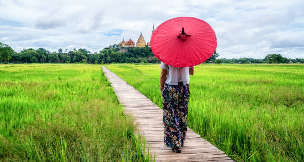 woman traveller hiking asian rice field landscape. - philippines stock photos and pictures
