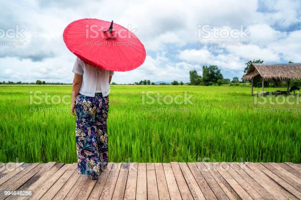 Woman traveller hiking asian rice field landscape picture id994646256?b=1&k=6&m=994646256&s=612x612&h=38zftcrgy1kota6z6e9fgk7c3crhosyz2hisowygja4=