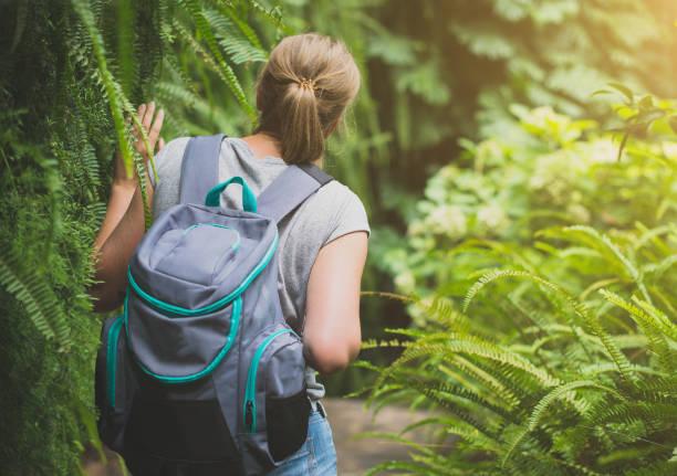 森のバックパックで旅行者女性。 - 自然旅行 ストックフォトと画像