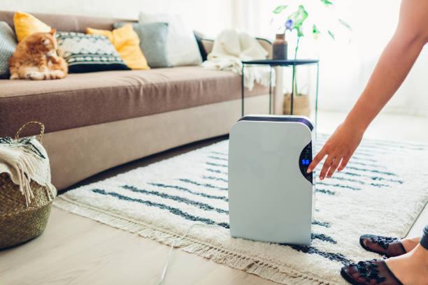 女性は自宅でタッチパネルを使用して除湿器を回す。空気を洗浄するための現代 airdryer 装置 - 加湿器 ストックフォトと画像
