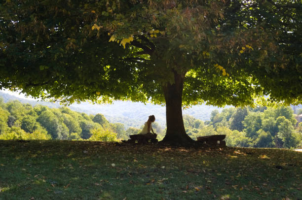 Woman under the shade of a tree stock photo