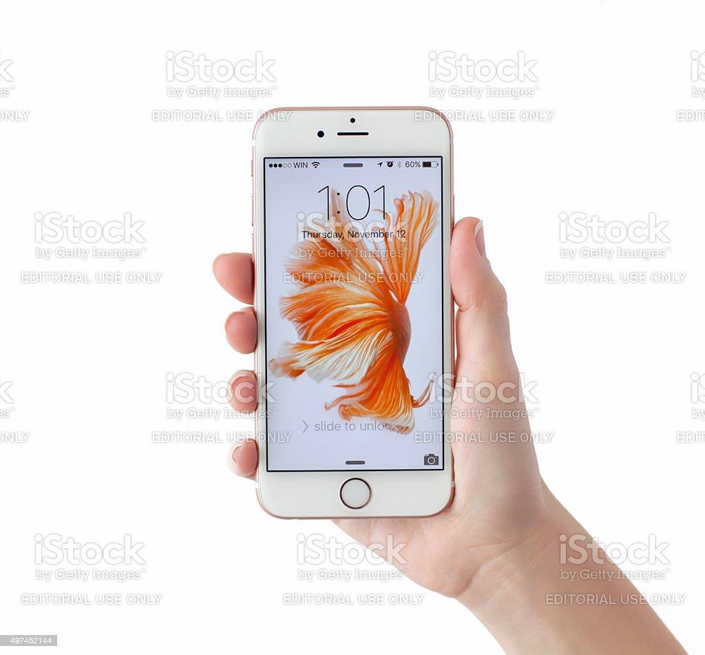 Donna Aprire Iphone 6s Oro Rosa Su Sfondo Bianco Fotografie Stock