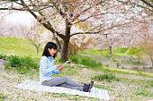 を使用する女性、デジタルタブレット楽しみながら、桜の花