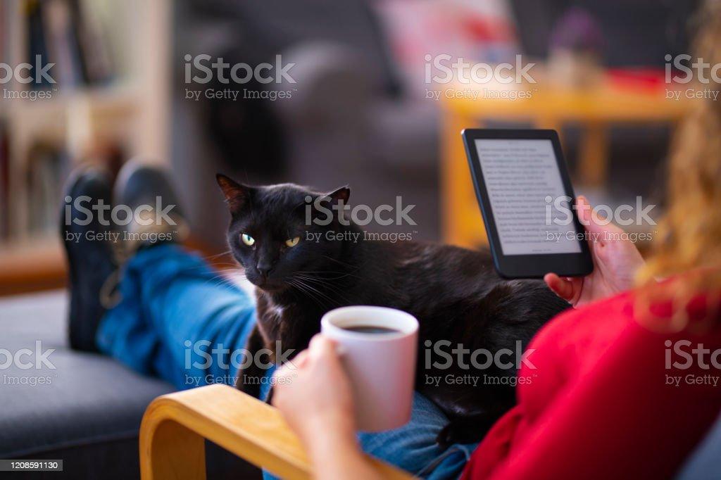 Frau mit einem E-Reader und Lesen eines E-Books mit ihrer Katze zu Hause - Lizenzfrei Arbeiten Stock-Foto