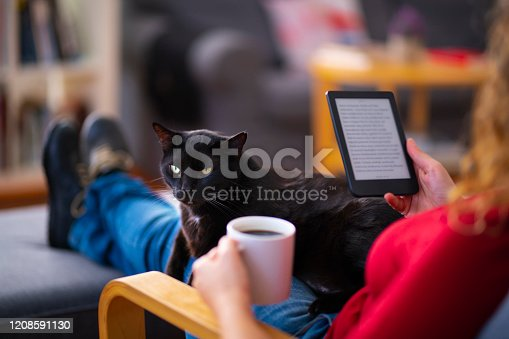 Woman sitting on a couch with her cat and using a chroma key screen tablet computer.
