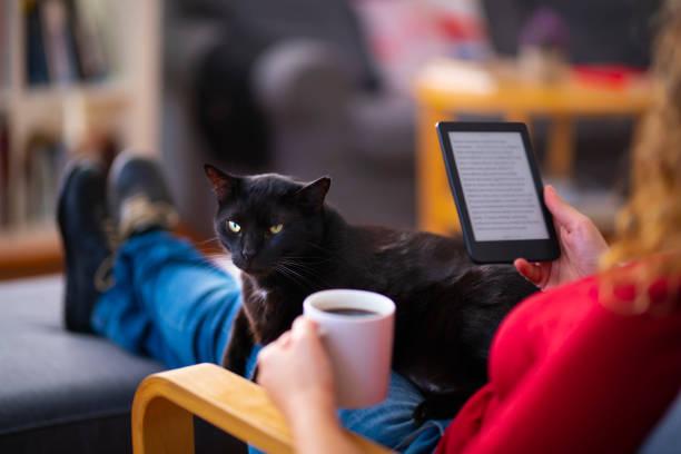 Frau mit einem E-Reader und Lesen eines E-Books mit ihrer Katze zu Hause – Foto