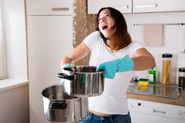 Woman Using Cellphone For Water Leakage Problem stock photo