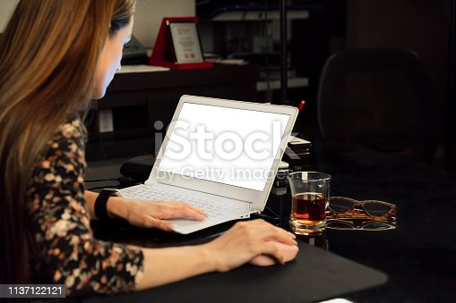 Woman using computer, working at home - copy space on laptop screen