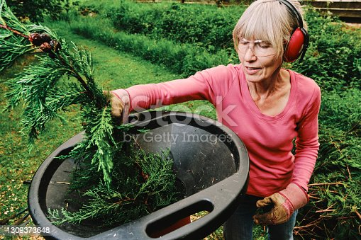 Female gardener feeding twigs and thin branches into an electric garden shredder for composting.