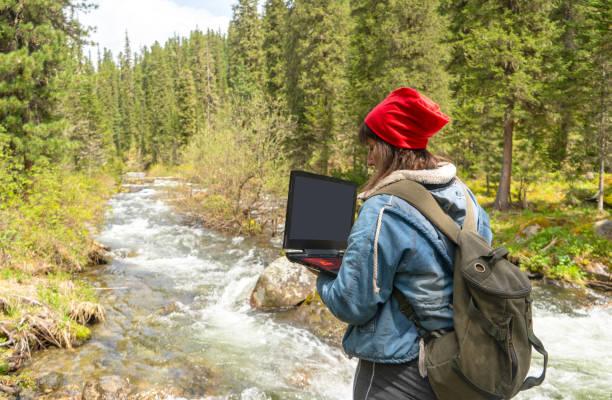 Mujer usando computadora portátil en el bosque del norte en verano - foto de stock