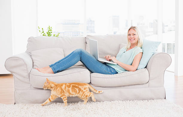 Woman using laptop on sofa while cat passing by picture id474502346?b=1&k=6&m=474502346&s=612x612&w=0&h=0 qk9cq5 6glral6jqwhse8ywkuirkuk9hsbtk pijs=