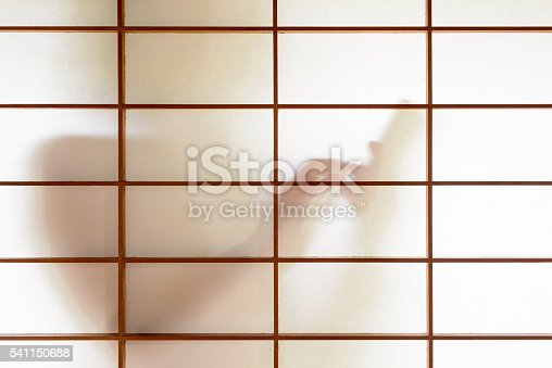 Silhouette of a woman using smartphone behind a Japanese paper screen.