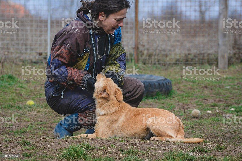 Woman volunteer and dog stock photo